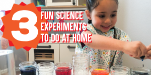Three Fun Science Experiments to Do at Home