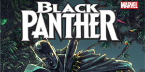 3 Must Read Black Panther Series