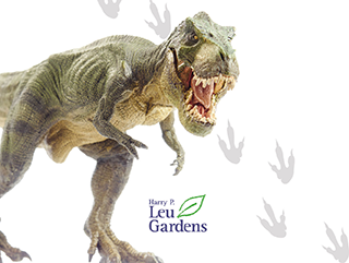 Check it Out: Leu Gardens